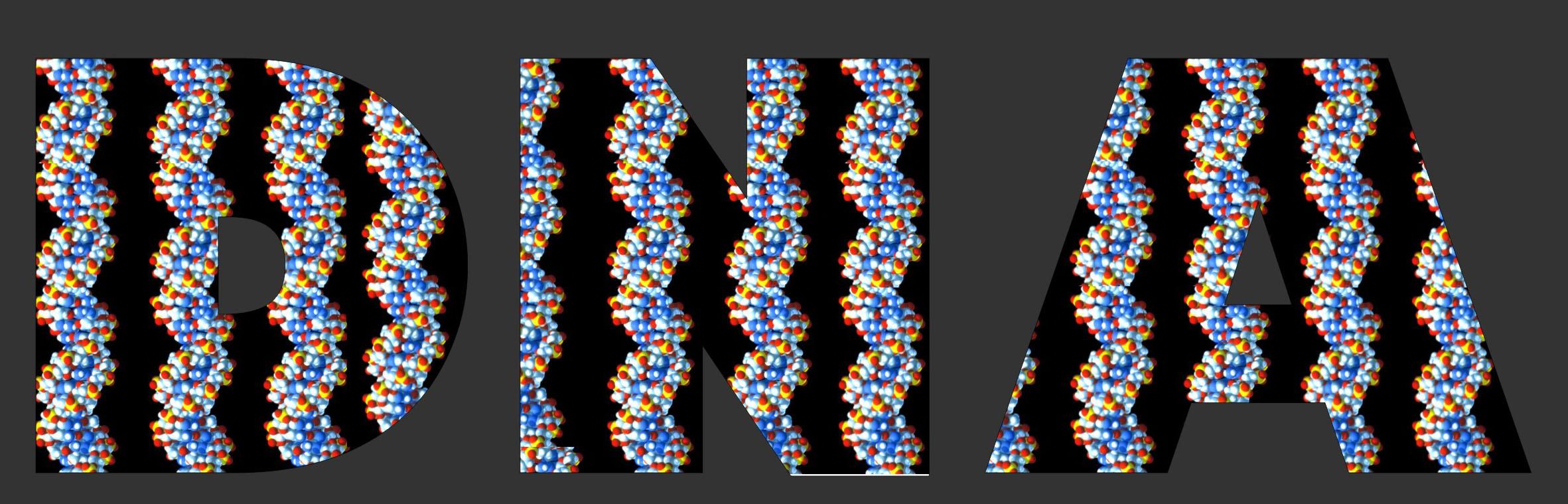 DNA_2a1